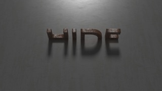 HIDE (Christian Scholz)